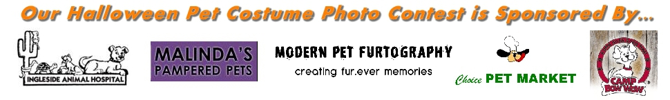 Halloween Pet Photo 2010