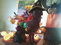 Mesha Me Wittle Witch